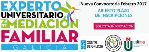 experto en mediación familiar y resolución de conflictos galicia