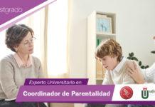 Experto Universitario en Coordinador de Parentalidad