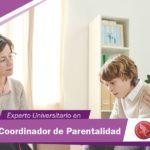 Coordinador de Parentalidad